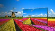 Panasonic-LCD panel